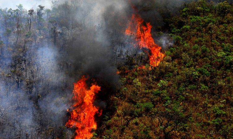 Fernando Pimentel libera recursos para combate a incêndios em Minas