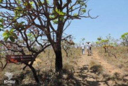 Parque inaugura trilha literária baseada em Grande Sertão: Veredas
